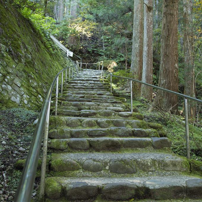参道〜入口から山門までの石段〜