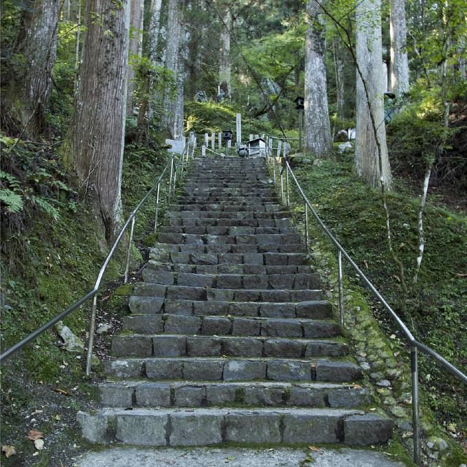 参道〜山門からの石段〜